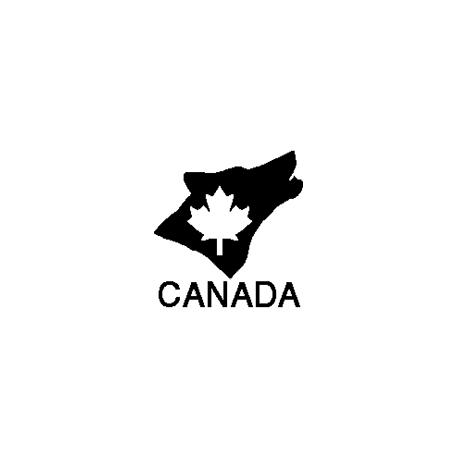 Pliage de livre Canada loup + feuille d'érable