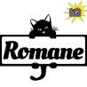 Romane name with cat frame folded book