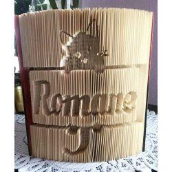 Romane cat frame folded book