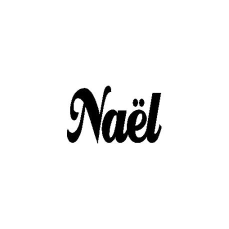 Naël folded book