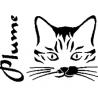 Pliage de livre chat Plume