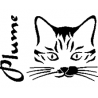 Plume cat folded book