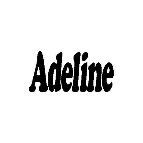 Adeline folded book