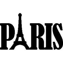 Paris custom folded book pattern