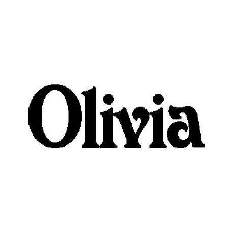 Olivia custom folded book pattern