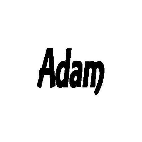 Patron livre plié Adam