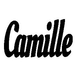 Pliage de livre Camille