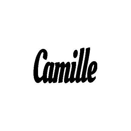 Camille custom folded book pattern