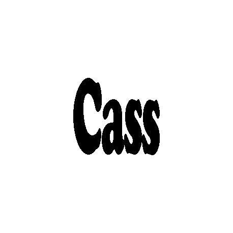 Patron livre plié sur mesure Cass