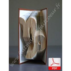 Folded book pattern capricorn sign