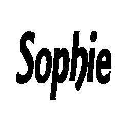 Patron livre plié Sophie