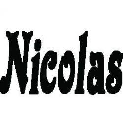 Pliage de livre Nicolas