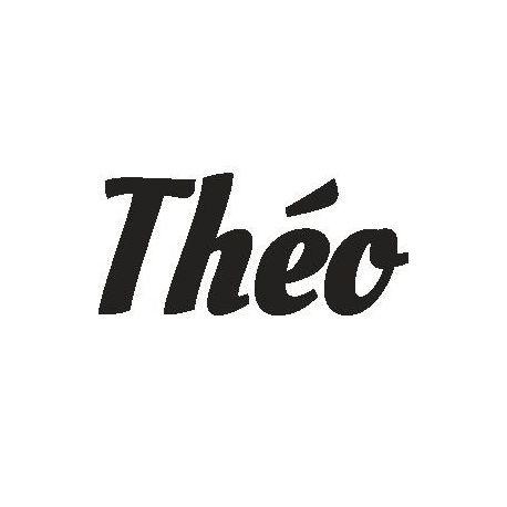 Patron livre plié Théo