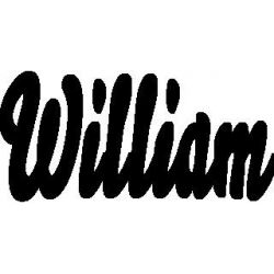Pliage de livre William