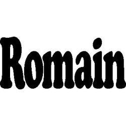 Pliage de livre Romain