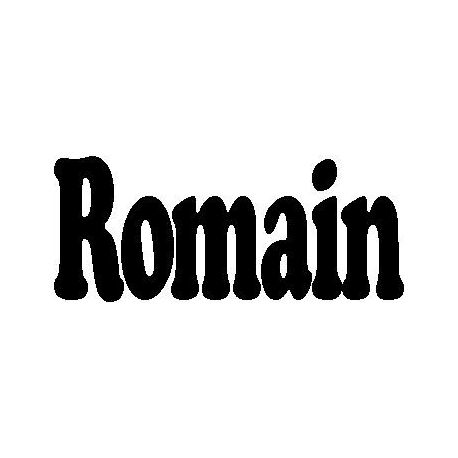 Patron livre plié Romain
