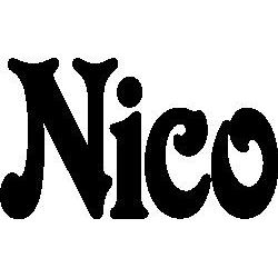 Pliage de livre Nico