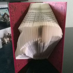 Dolphin folded book
