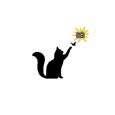 Patron livre plié sur mesure chat/papillon