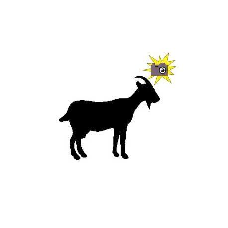 Patron livre plié sur mesure chèvre