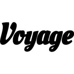 Pliage de livre Voyage