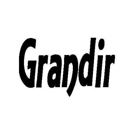 """Grandir"" book folding pattern"