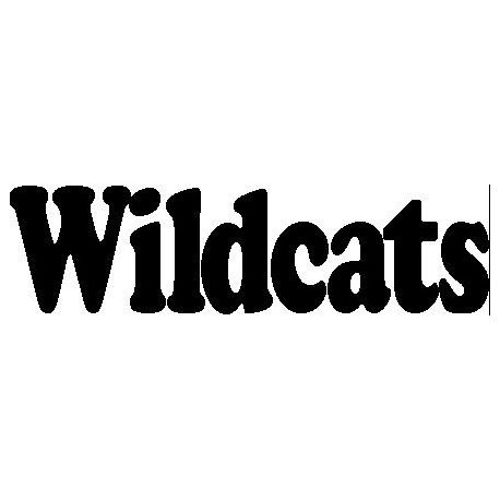 """Wildcats"" book folding pattern"