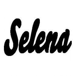 Selena folded book