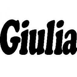 Patron livre plié Giulia