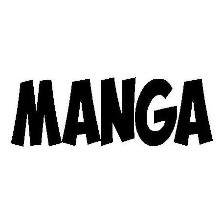 "Patron livre plié ""MANGA"""