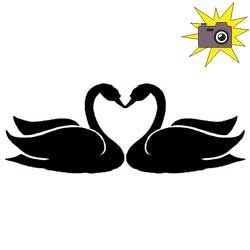 Patron livre plié personnalisé cygnes amoureux