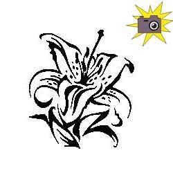 Pliage de livre fleur de lys (n°3)