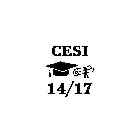 Patron livre plié diplôme CESI