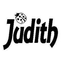 Pliage de livre Judith + coccinelle
