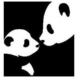 Pandas folded book