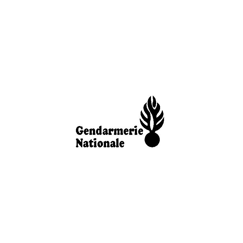 patron d coup 39 pliage grenade gendarmerie nationale. Black Bedroom Furniture Sets. Home Design Ideas