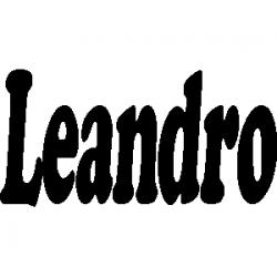 Pliage de livre Leandro
