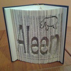 Aleen + hippopotamus folded book