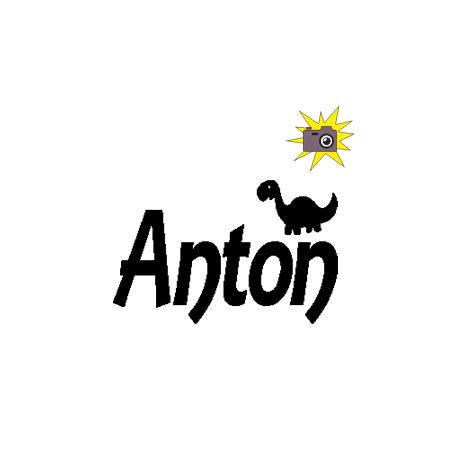 Pliage de livre Anton + dinosaure