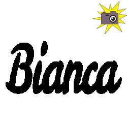 Pliage de livre Bianca (n°2)
