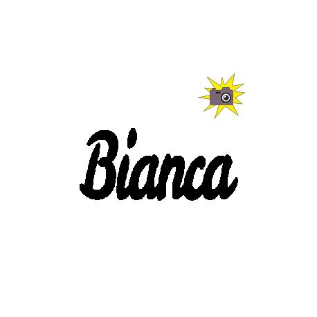 Bianca book folding (n°2)