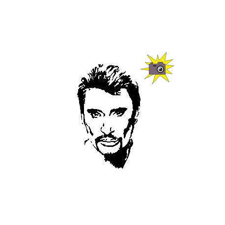 Cut and fold pattern Johnny Hallyday