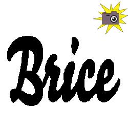 Pliage de livre Brice