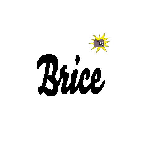 Brice book folding