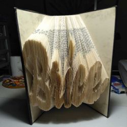 Brice folded book