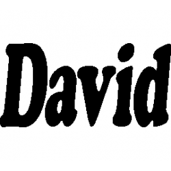 Pliage de livre David