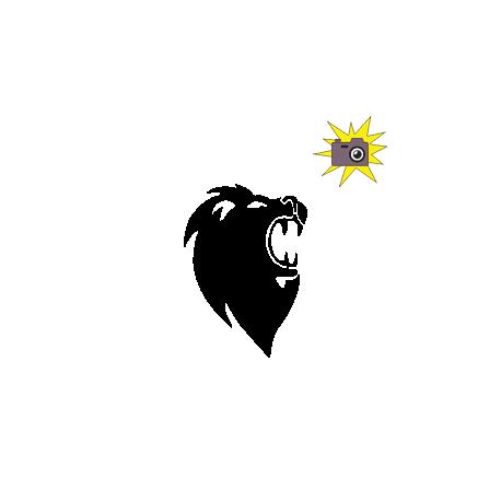 Pliage de livre tête de lion rugissant